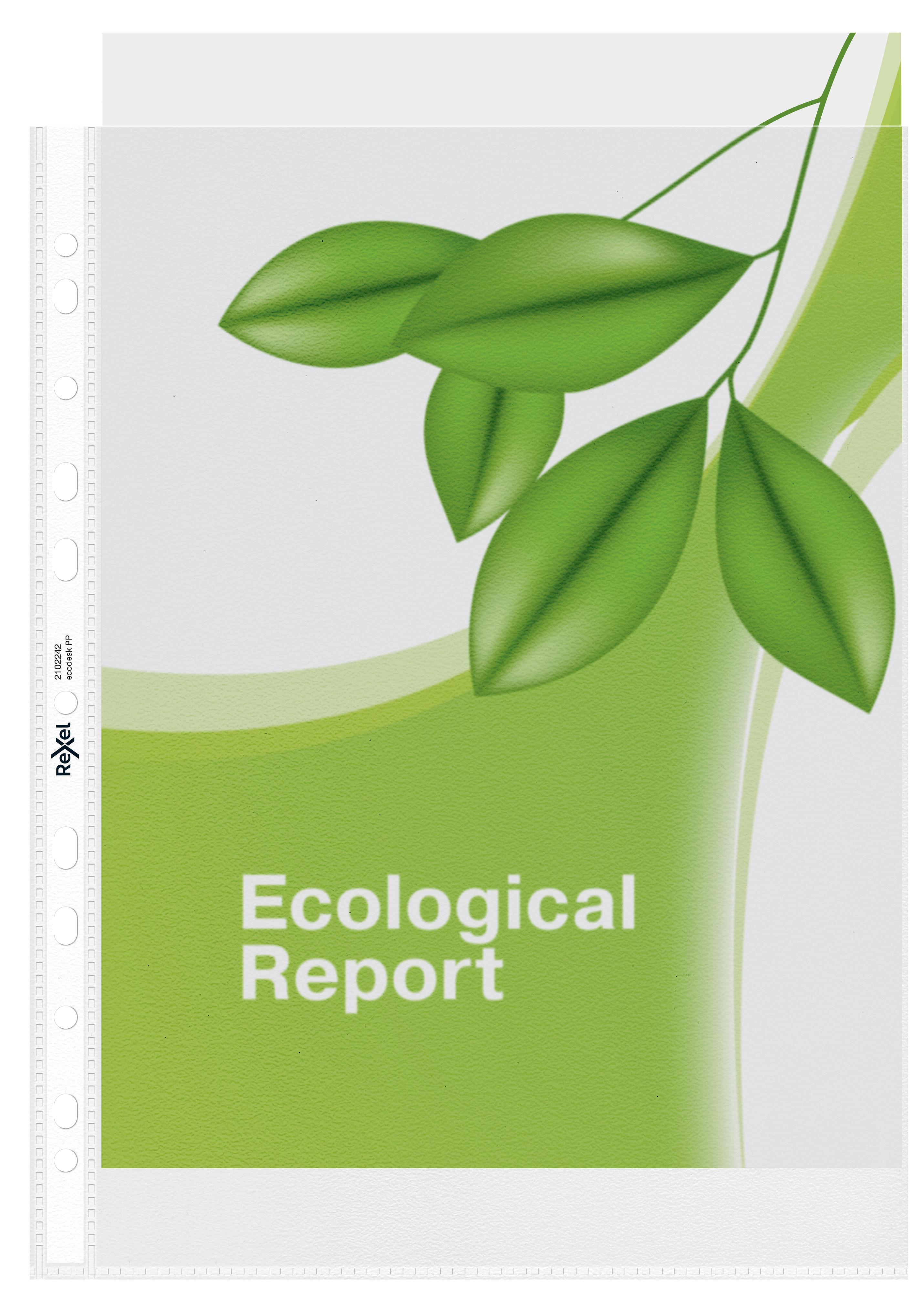 Rexel Ecodesk Filing Pockets 120 Micron A4 2102242 (PK25)