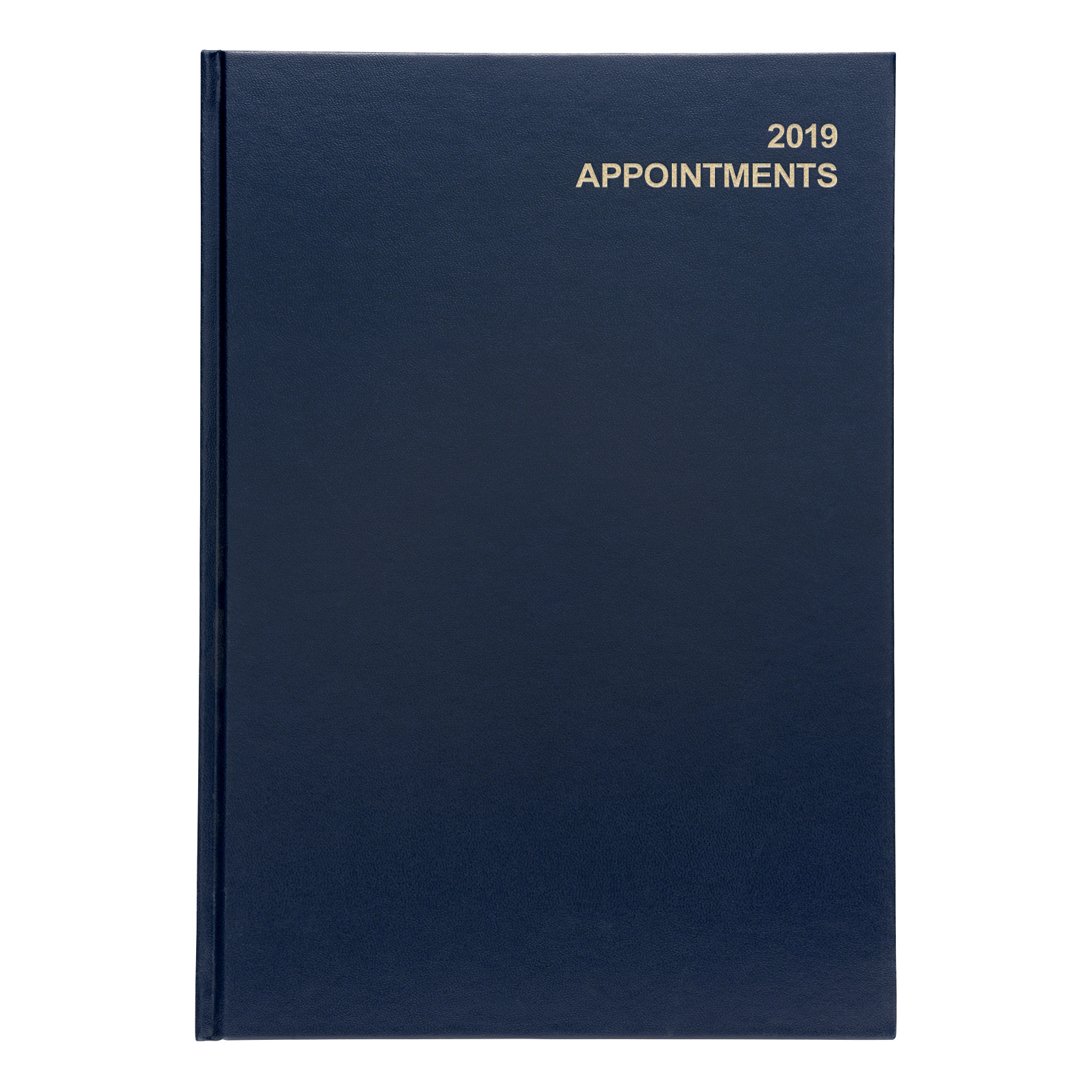 Business 2019 A4 Day/Pge Appoint Dry Blu