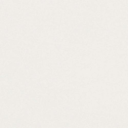Conqueror Paper CX22 High White FSC4 B1 700x1000mm  320Gm2 Non Watermarked Pack 100