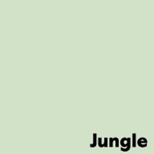 Image Coloraction Pale Green (Jungle) FSC4 Sra2 45 0X640mm 80Gm2 Pack 500