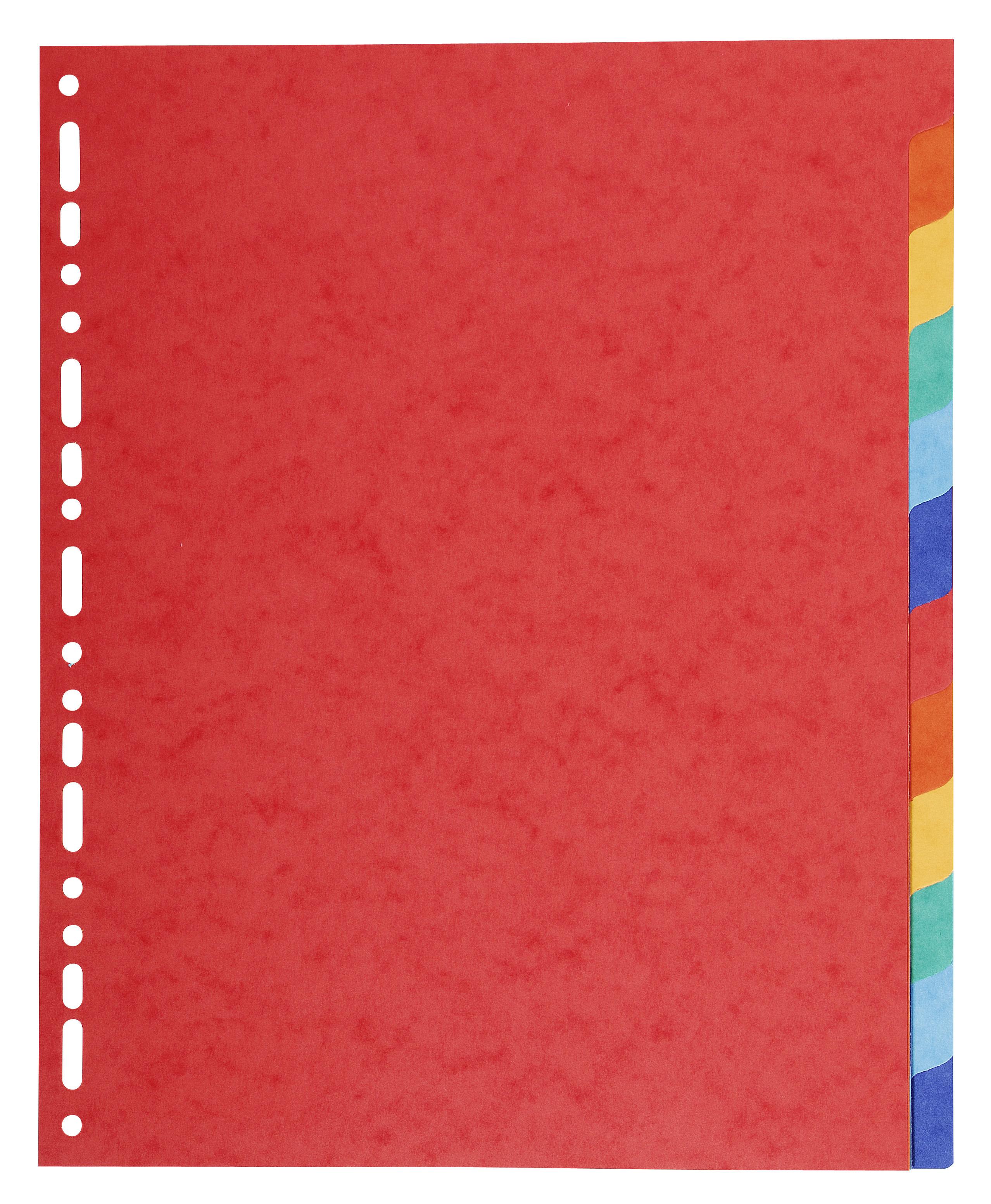 Forever Dividers A4 Plus Vivid Colours 12 parts 220gsm