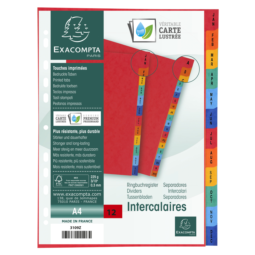 Europa Jan-Dec Dividers A4 Assorted
