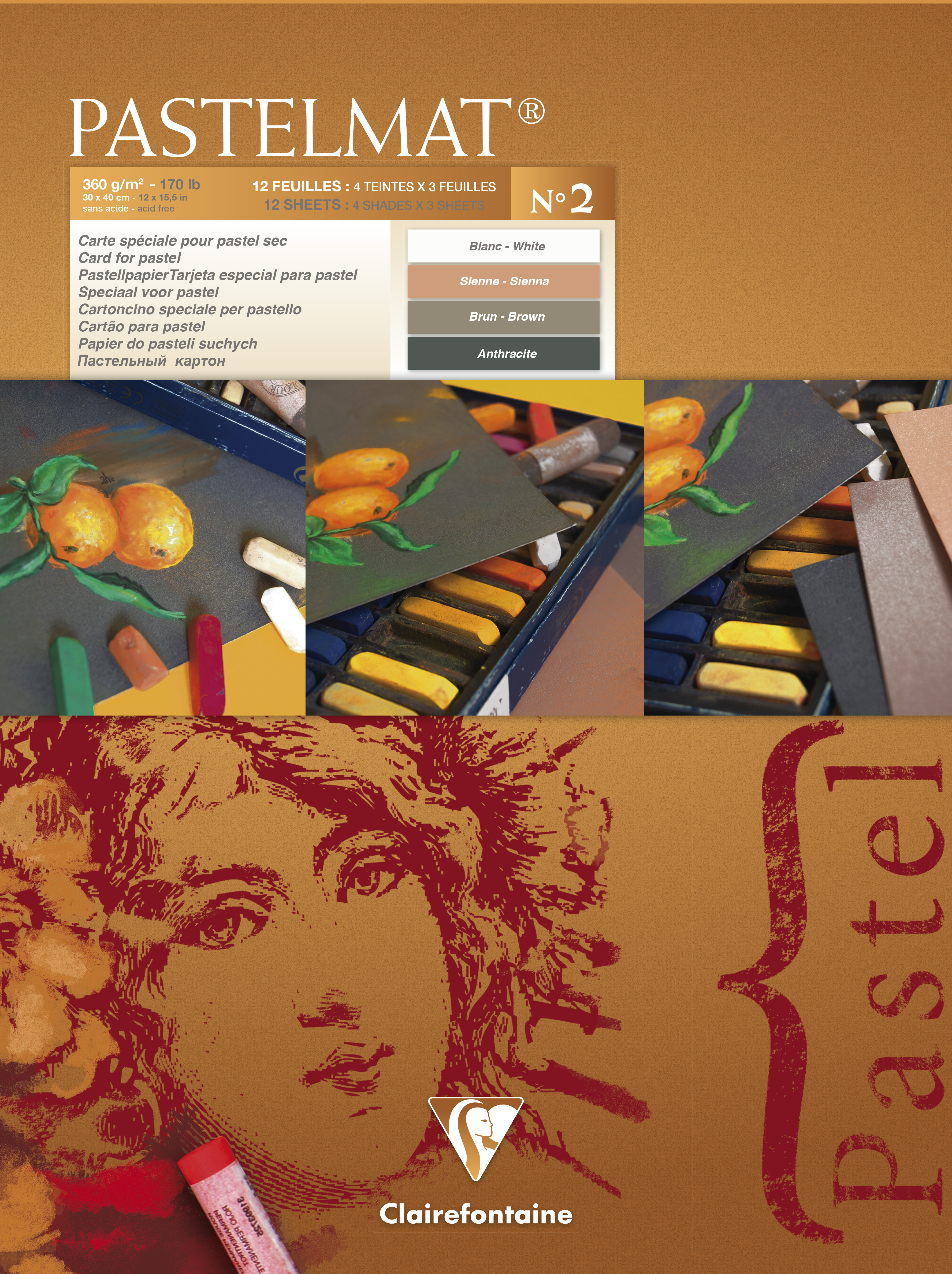 Clairefontaine Pastelmat Pad No.2 300x400mm 360gsm 12 Sheets 4 Colour Shades of Paper 96008C