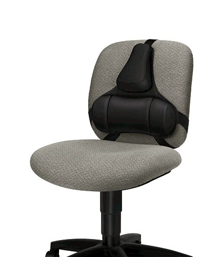 Chair Fellowes Ultimate Back Support Professional Series 8041801