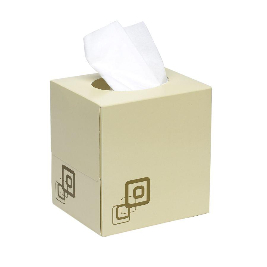 Maxima 2ply Tissue Cube Box Cream (PK24)