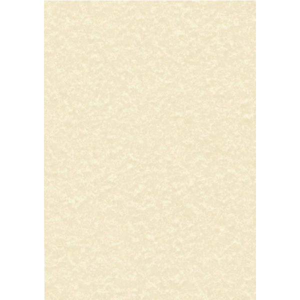 Letterhead Presentation Paper Poster Quality 165gsm A4 Champagne [50 Sheets]