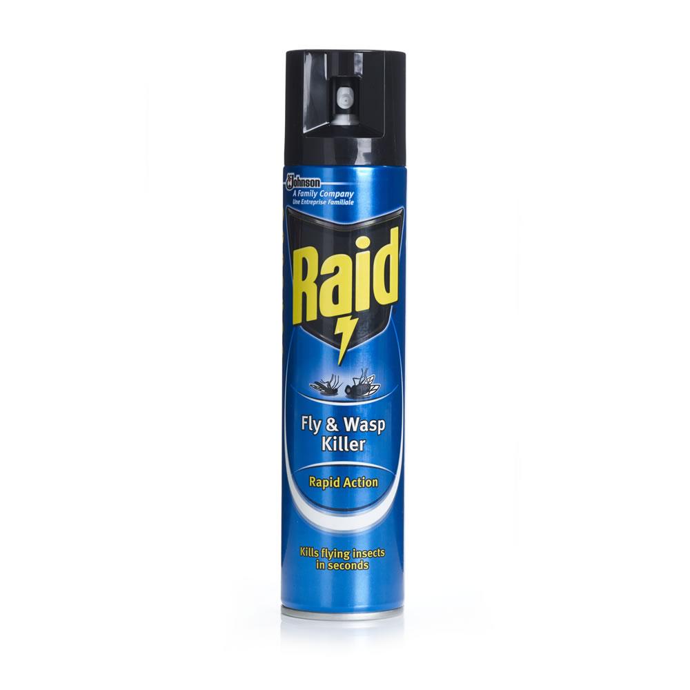 Raid Fly and Wasp Killer Aerosol (Pack 6)