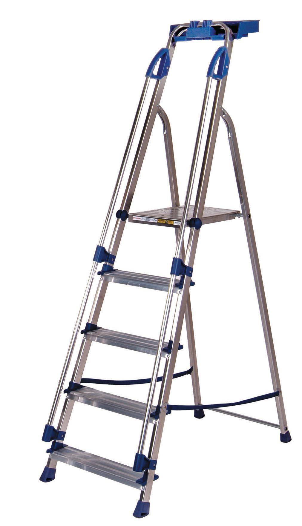 Ladder 5 Steps Blue Seal Capacity 150kg