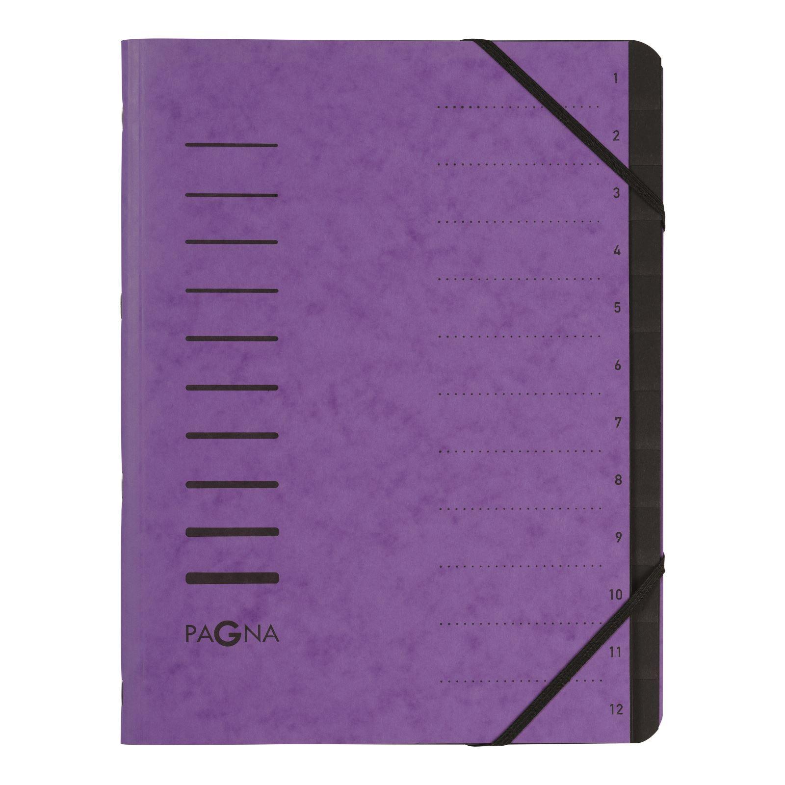Pagna Pro 12 Part File A4 Purple