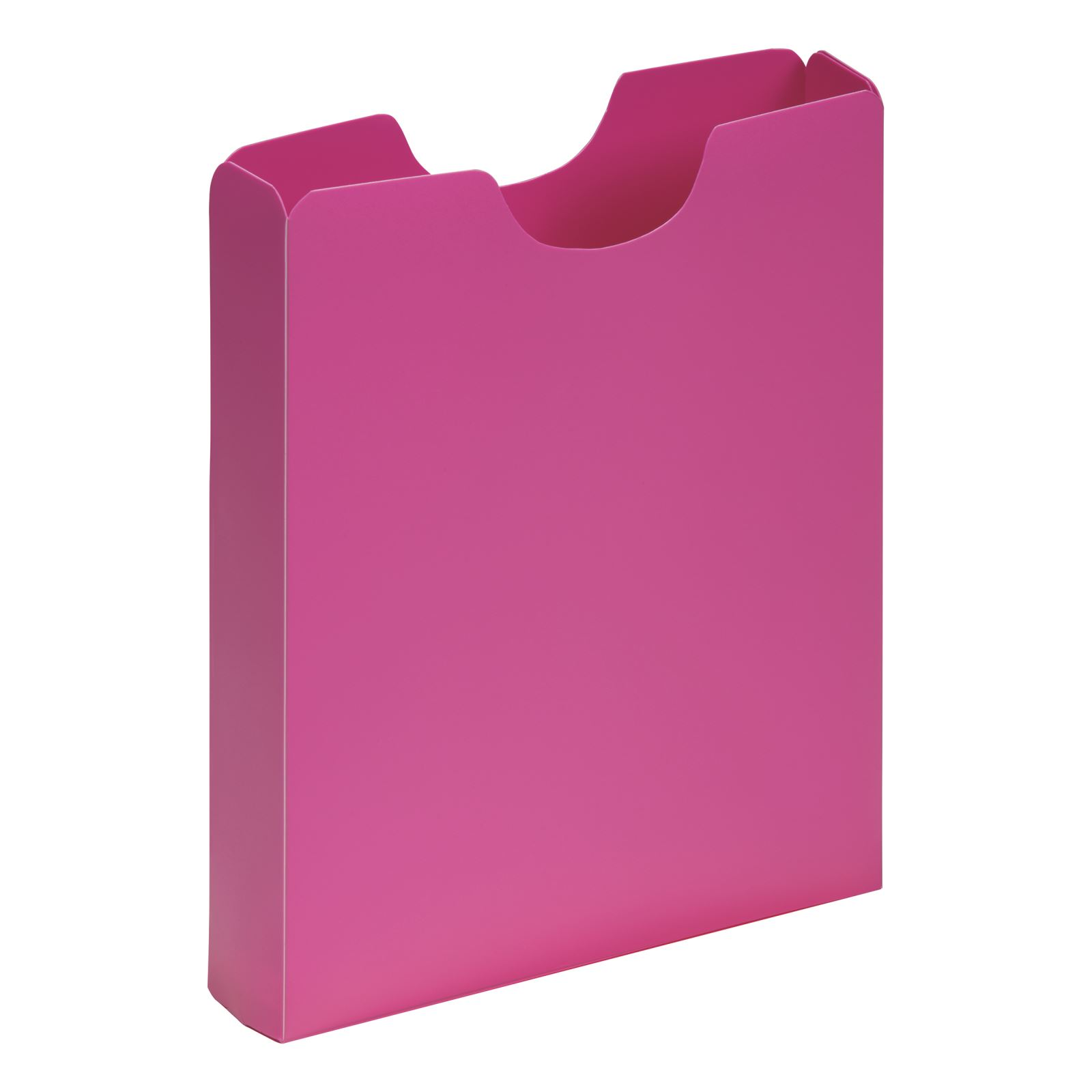 Pagna PP A4 Carry Case Pink