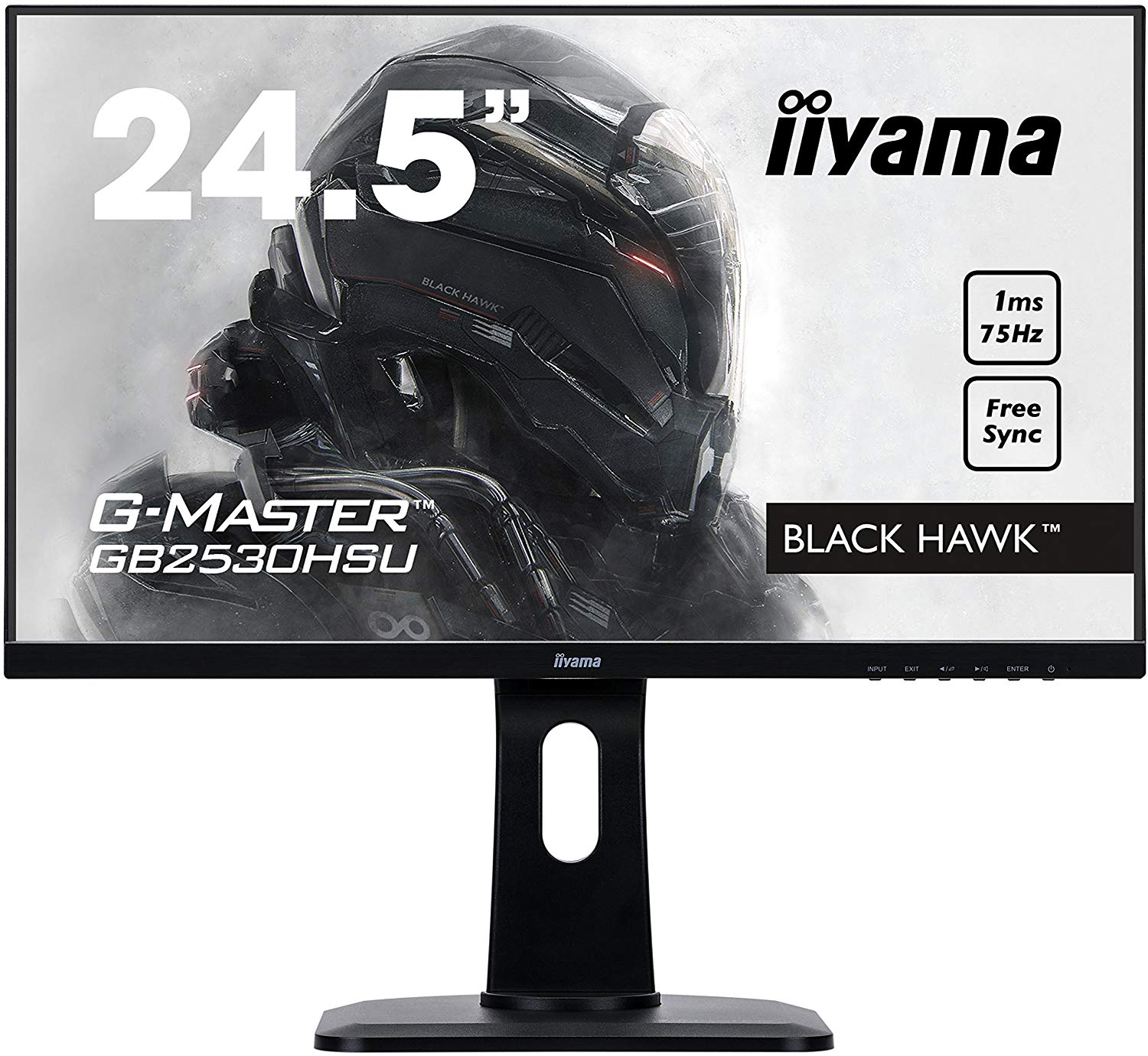 24.5in Monitor Full HD Speakers VGA HDMI