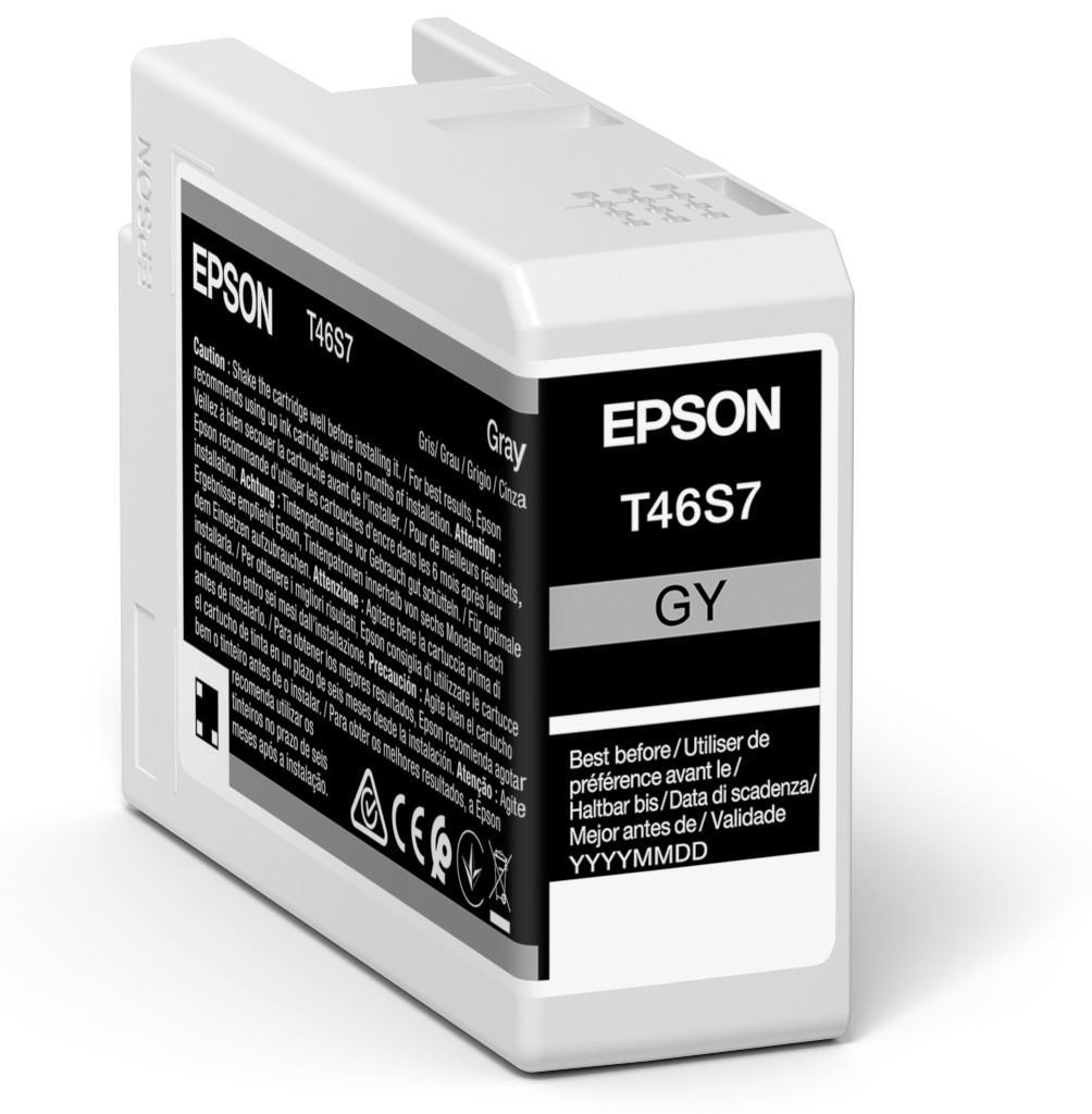 Inkjet Cartridges Epson Grey T46S7 Pro10 Ink Cartridge 25Ml