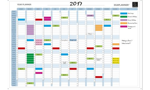 Exaplanner Yearly Magnetic Planner 90x59cm