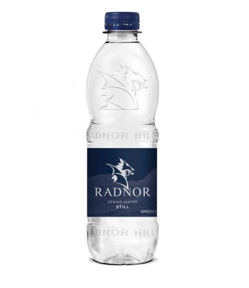 Radnor Hills Bottled Water 500ml (Pack 24)