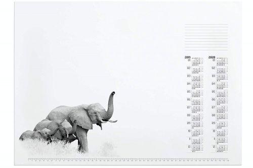 Desk Mat African Wildlife
