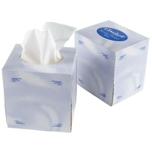 Kleenex Facial Tissue 90 Sheet 2 ply