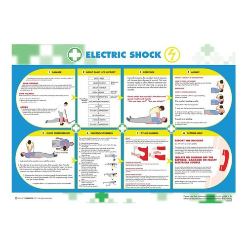 Wallace Cameron Electric Shock Poster 420x594mm 5405026