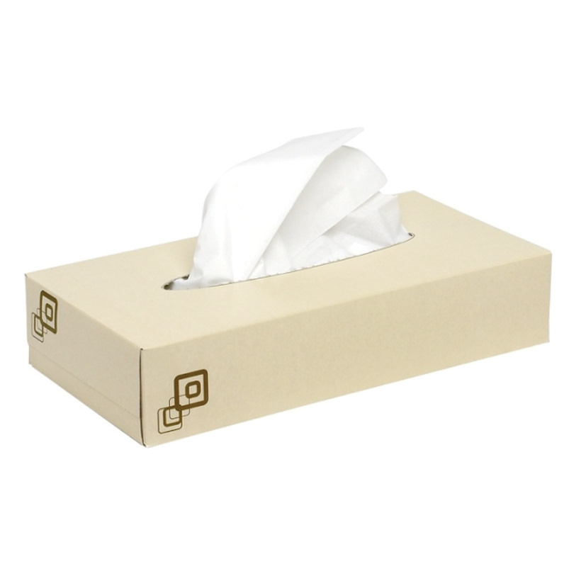 Maxima Facial Tissues 2-Ply 100 Tissues per Box White Ref 1103001 [Pack 36]
