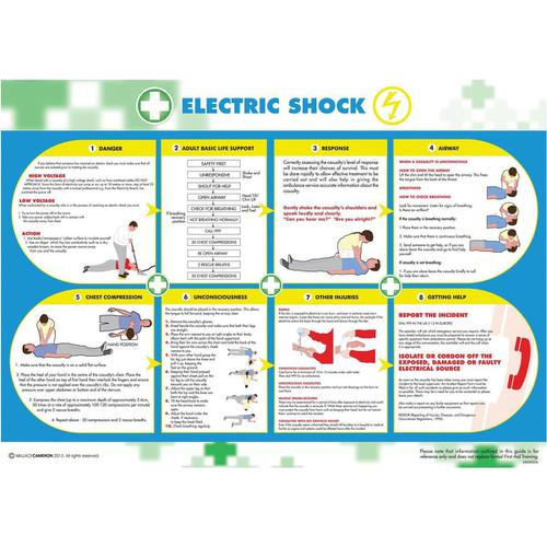 Wallace Cameron Electric Shock Poster Laminated Wall-mountable W590xH420mm Ref 5405026