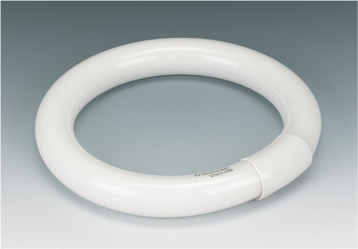 Circular Lamp Tube Bulb Fluorescent 8 Inch 4 Pin 22W Triphosphor