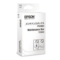 EP54372