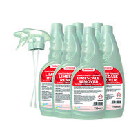 2Work Limescale Remover 750ml (Pack of 6) 2W07244