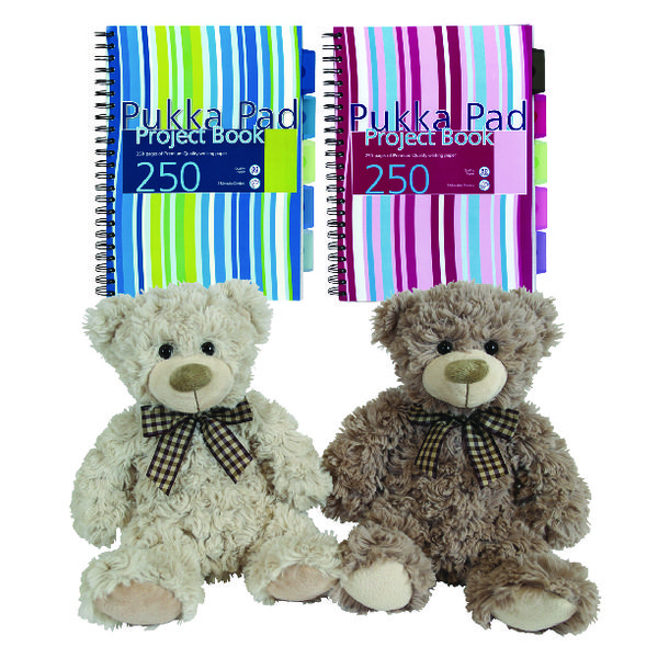 Pukka Pad Project Book A4 250 Sheet Plus Free Toy PP816971
